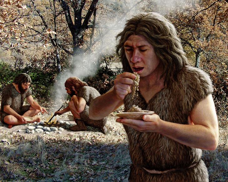 Фото №1 - Поцелуи с неандертальцами, пчелы-футболисты и другие новые открытия