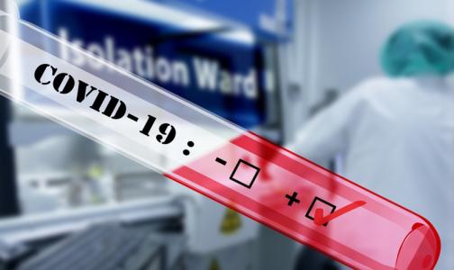 Фото №1 - Число заразившихся коронавирусом петербуржцев превысило 39 тысяч