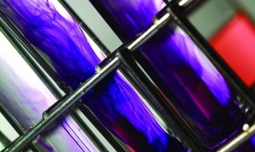 Фото №1 - Из американской лаборатории исчез опасный вирус