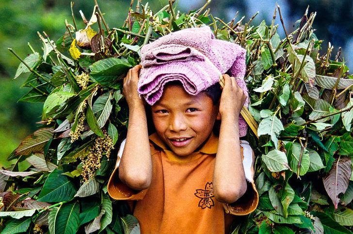 Фото №9 - От чистого сердца: Как живут в индийском штате Сикким