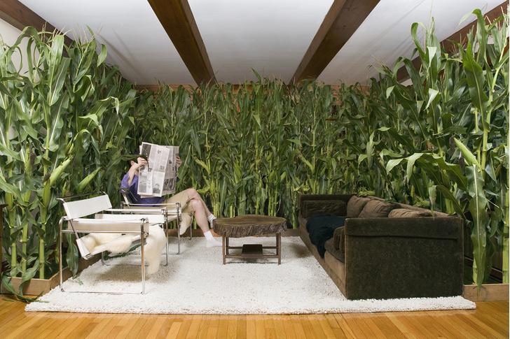 Фото №2 - 15 тайных комнат, о которых мечтает каждый взрослый