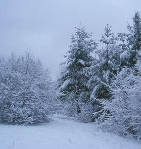 Фото №1 - За Уралом ударят морозы