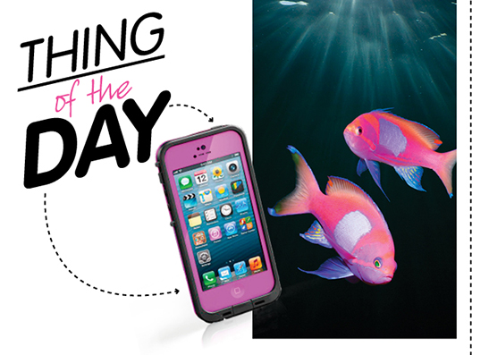 Фото №1 - Гаджет дня: чехол LifeProof для iPhone