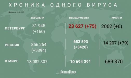 Фото №1 - Петербург занял пятое место по числу новых заразившихся коронавирусом - его выявили у 160 человек
