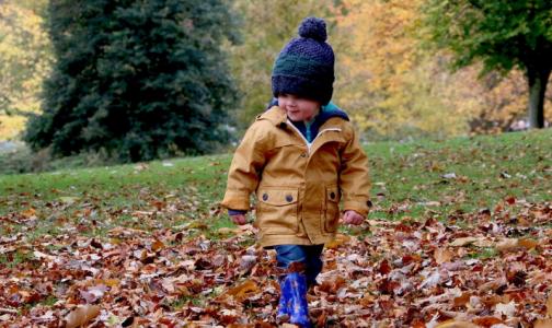Фото №1 - Врач запретила аллергикам фотографироваться с опавшими листьями
