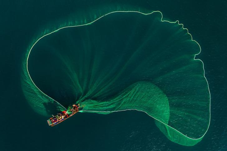 Фото №1 - Красочные сети