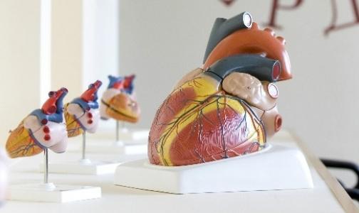 Фото №1 - В Петербурге открылся Музей сердца